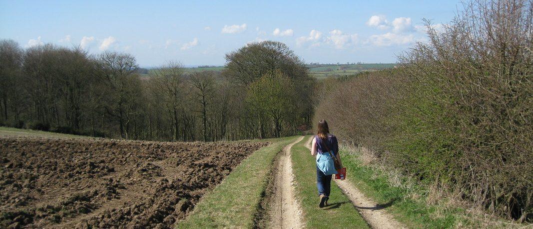 Solo female walker along path by field